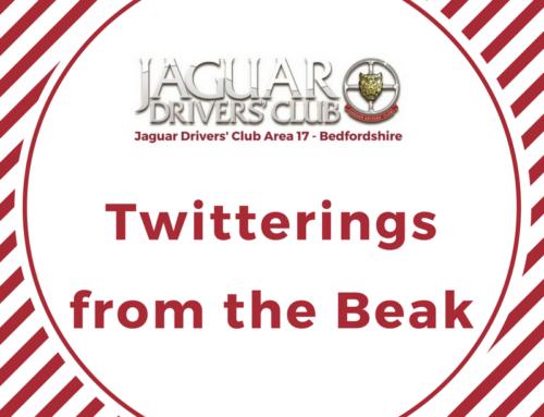 Twitterings from the Beak
